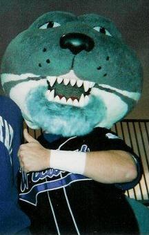 Wildcat mascot costume