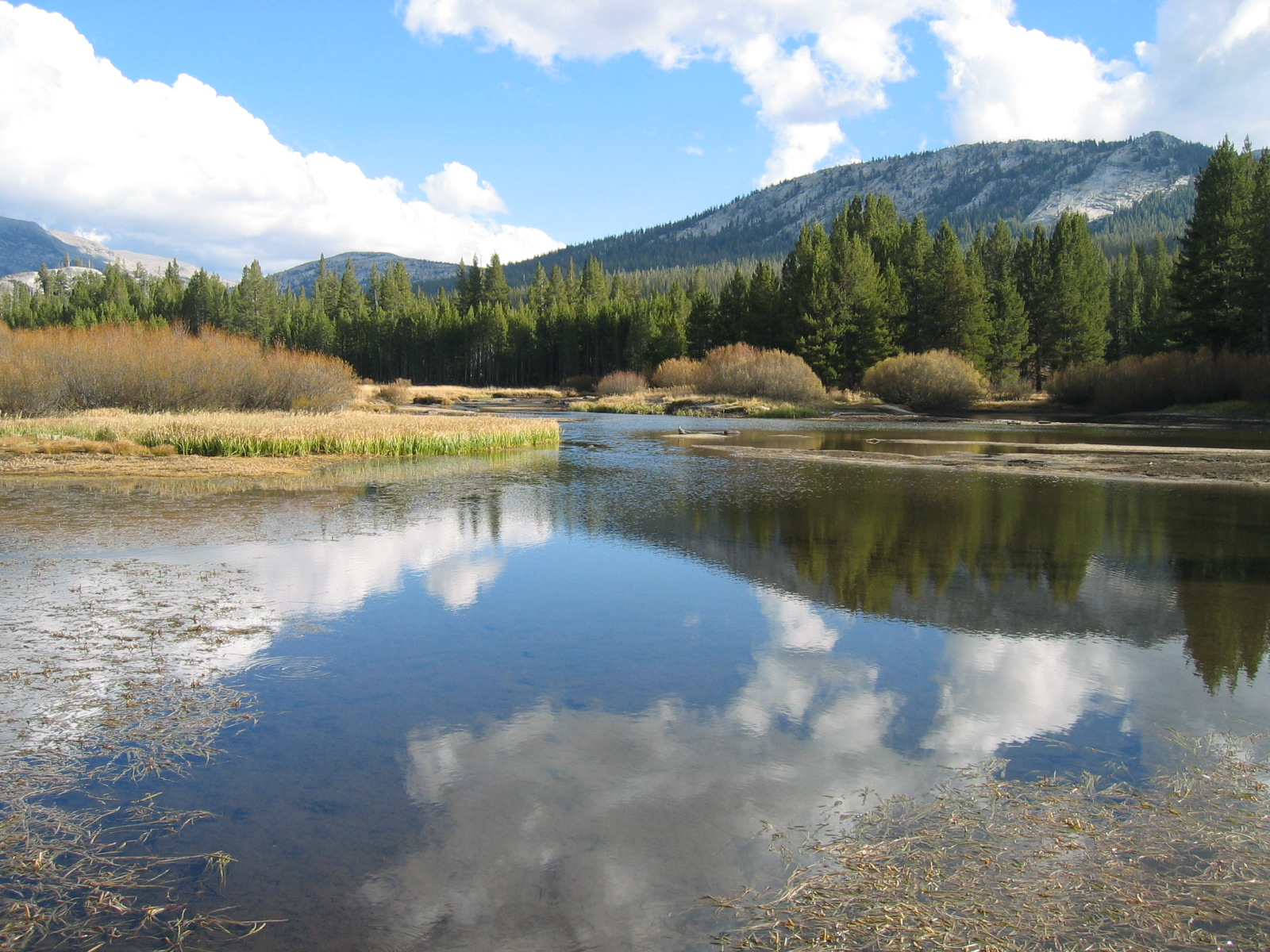 Yosemite-tuolumne_meadows_1.jpeg
