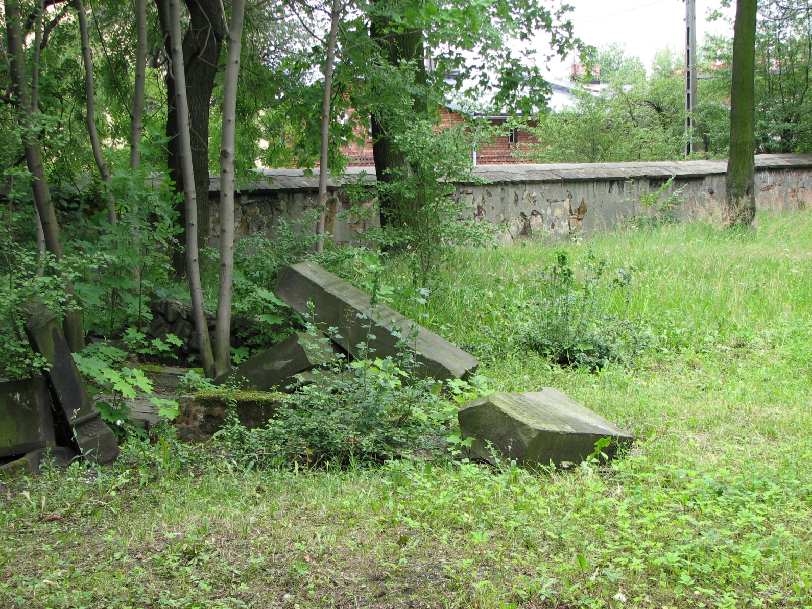 Cmentarz żydowski w Żorach