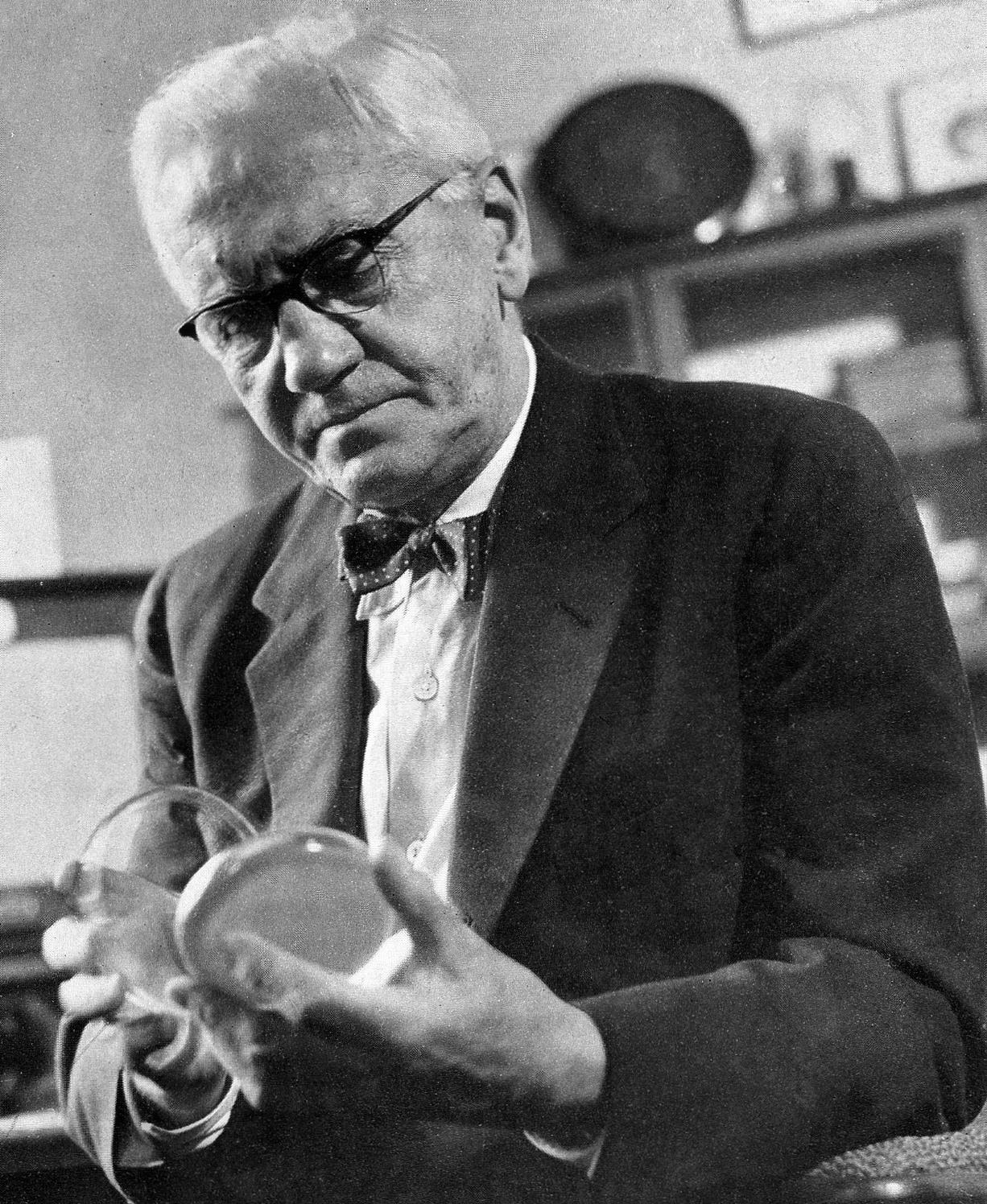 Alexander Fleming. Bacterias, antibióticos, penicilina. Biología, Medicina.