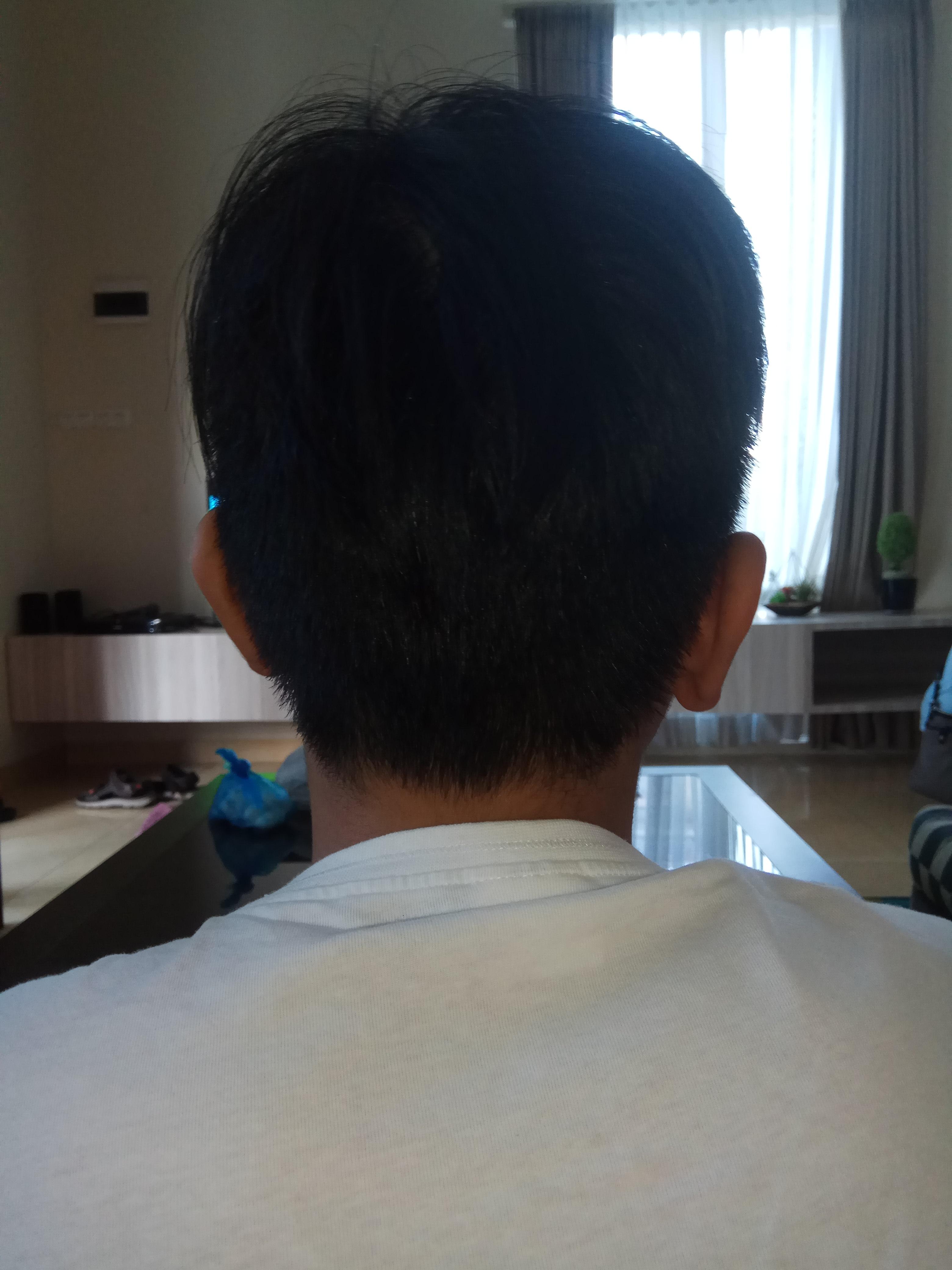 FileBoy with short black hair, rear view 18 September 18.jpg ...