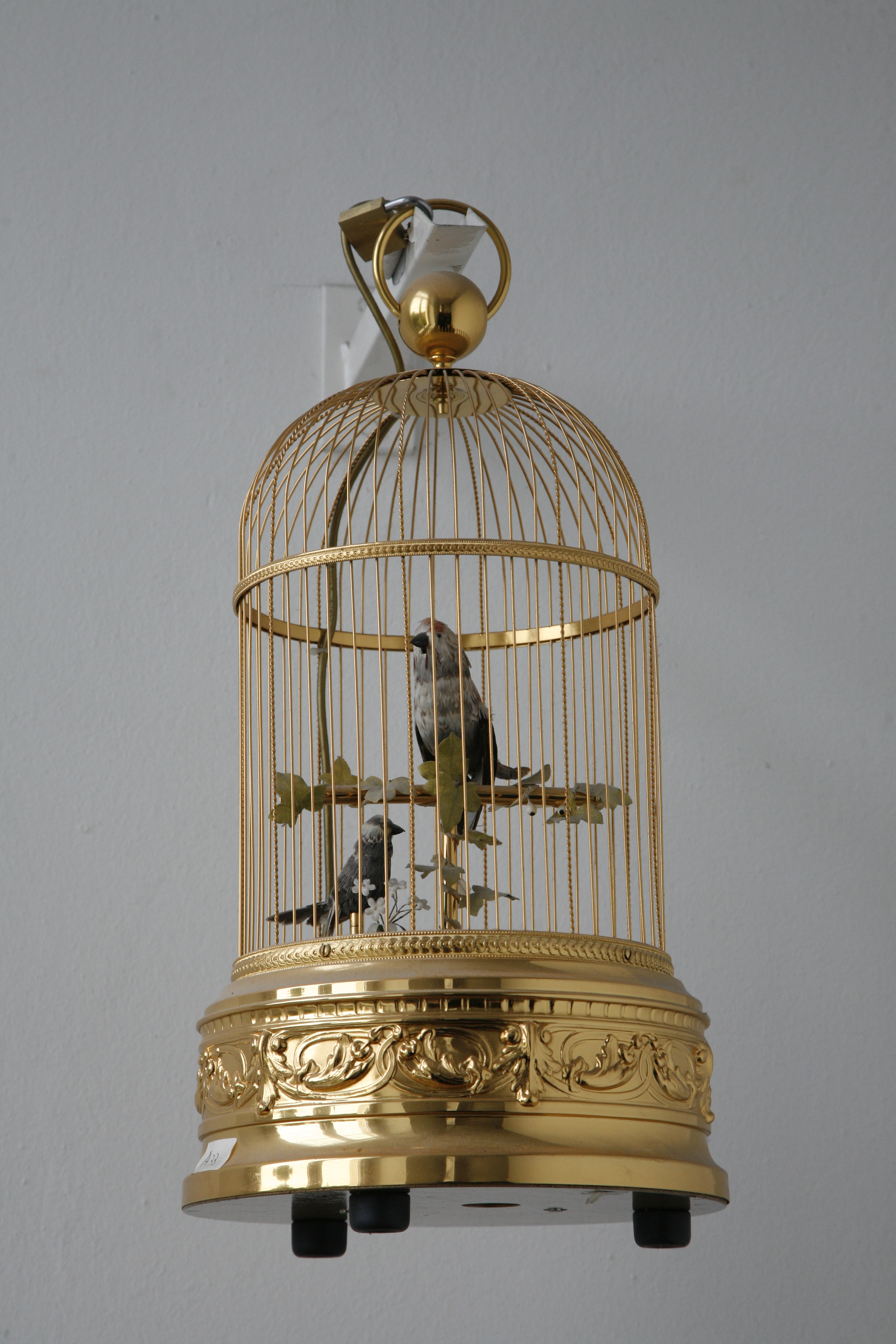 File cima mg wikimedia commons for Cages a oiseaux decoratives