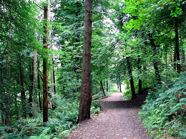 Cave Hill Country Park, Belfast - geograph.org.uk - 957634
