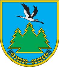 Маневичі, футзал