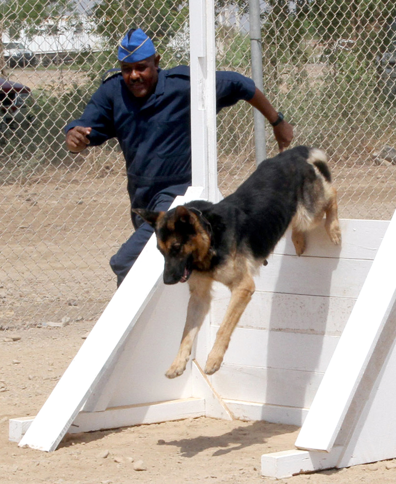 K-9 Obstacle Course