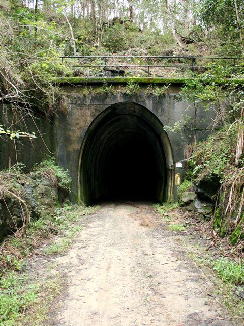 Dog Tunnel Australia