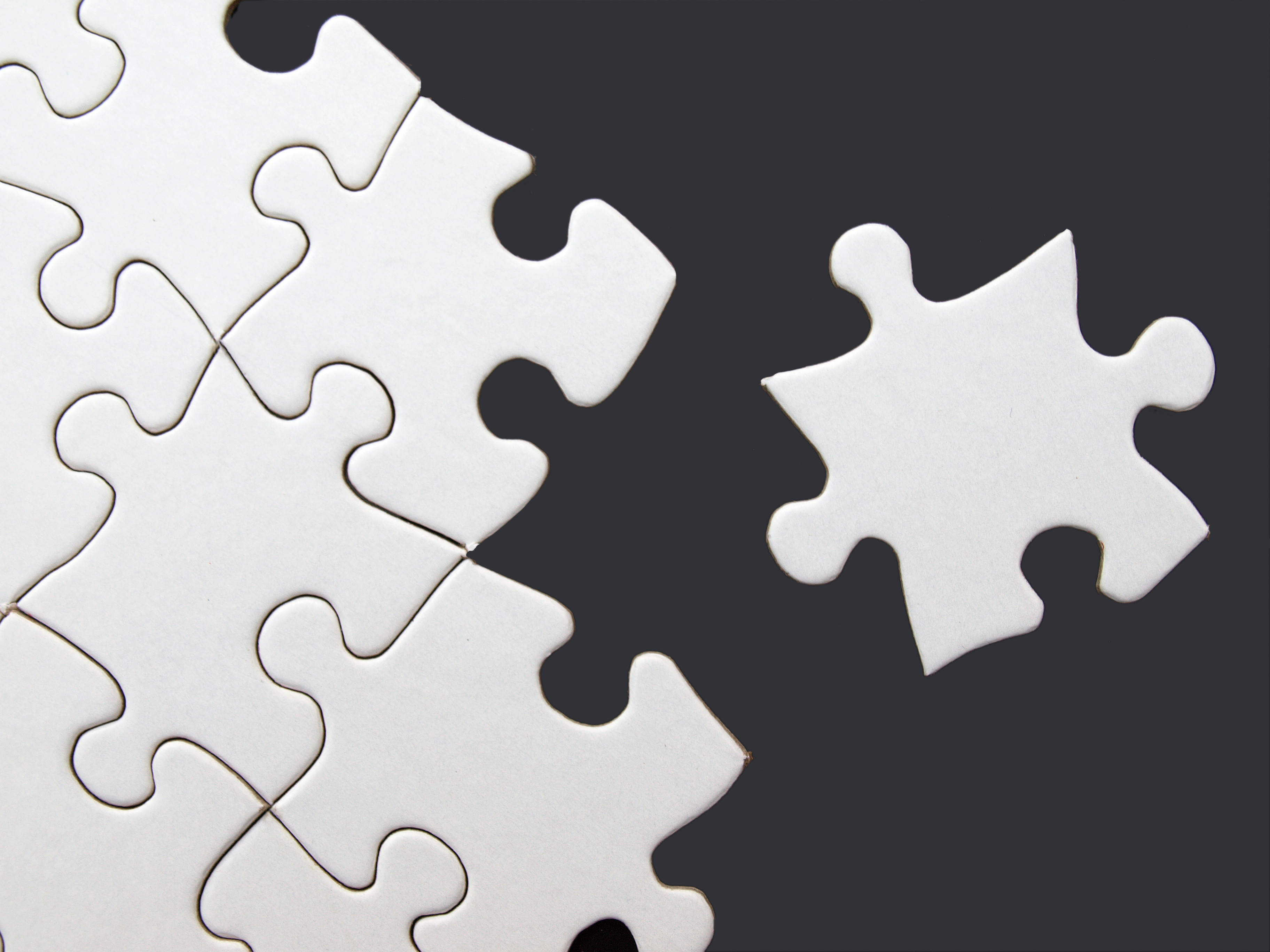 Image result for jigsaw pieces linked