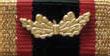 Ehrenkreuz der Bundeswehr für Tapferkeit - Ribbon.png
