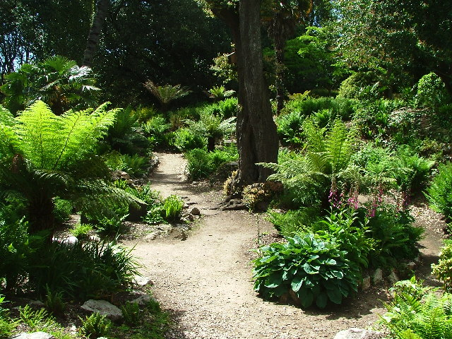 Formal Gardens, Mount Edgcumbe Park - geograph.org.uk - 51143