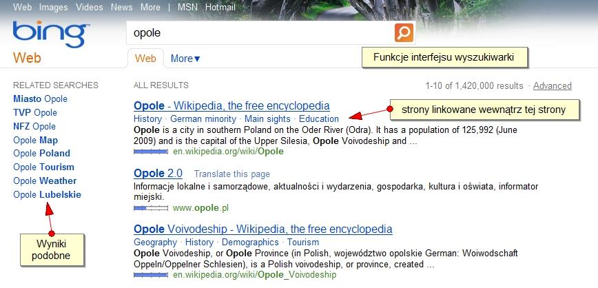 Funkcje_interfejsu_wyszukiwarki.jpg
