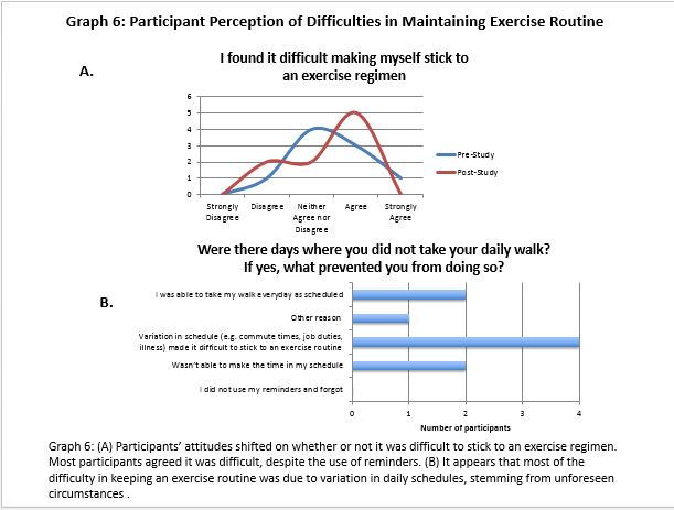 Participant Perception of Difficulties in Maintaining Exercise Routine
