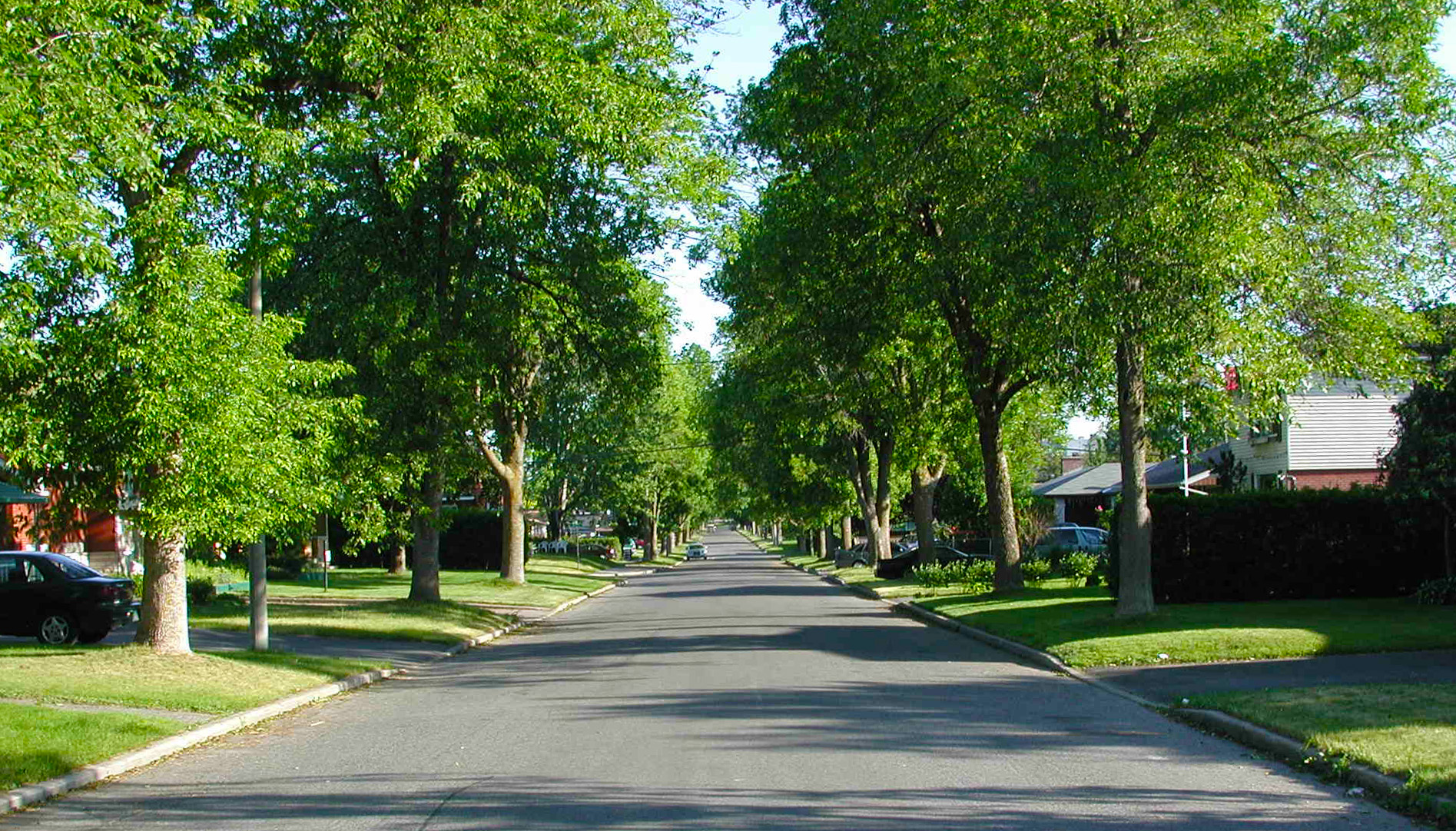 What Is Michigans Best Suburb For Raising Kids WDET