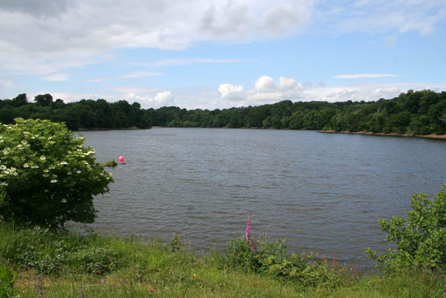 Knypersley Pool - geograph.org.uk - 942763