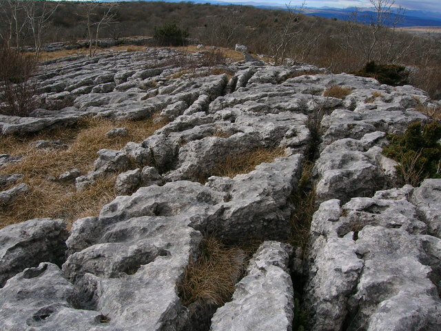 Limestone pavement on Hutton Roof Crags - geograph.org.uk - 1757515