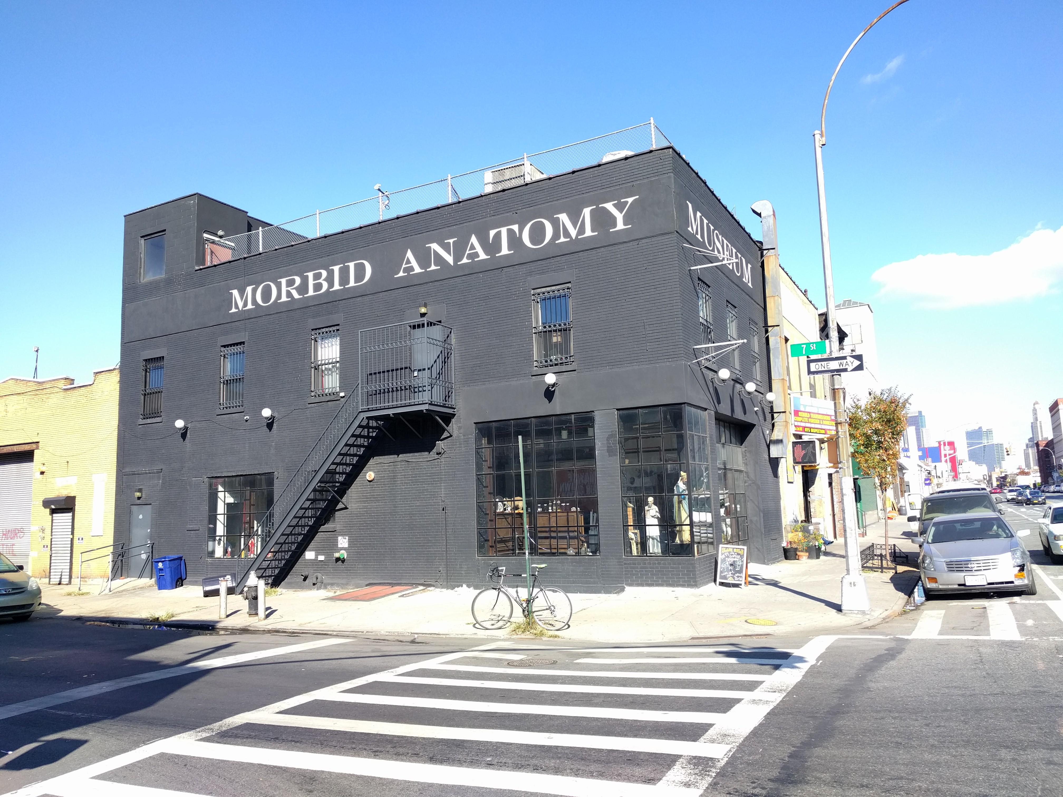 File:Morbid Anatomy Museum jeh.jpg - Wikimedia Commons