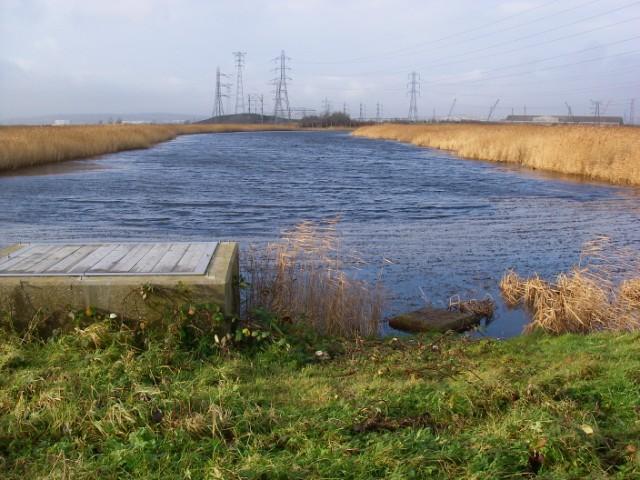 Newport Wetlands Reserve - geograph.org.uk - 1085697