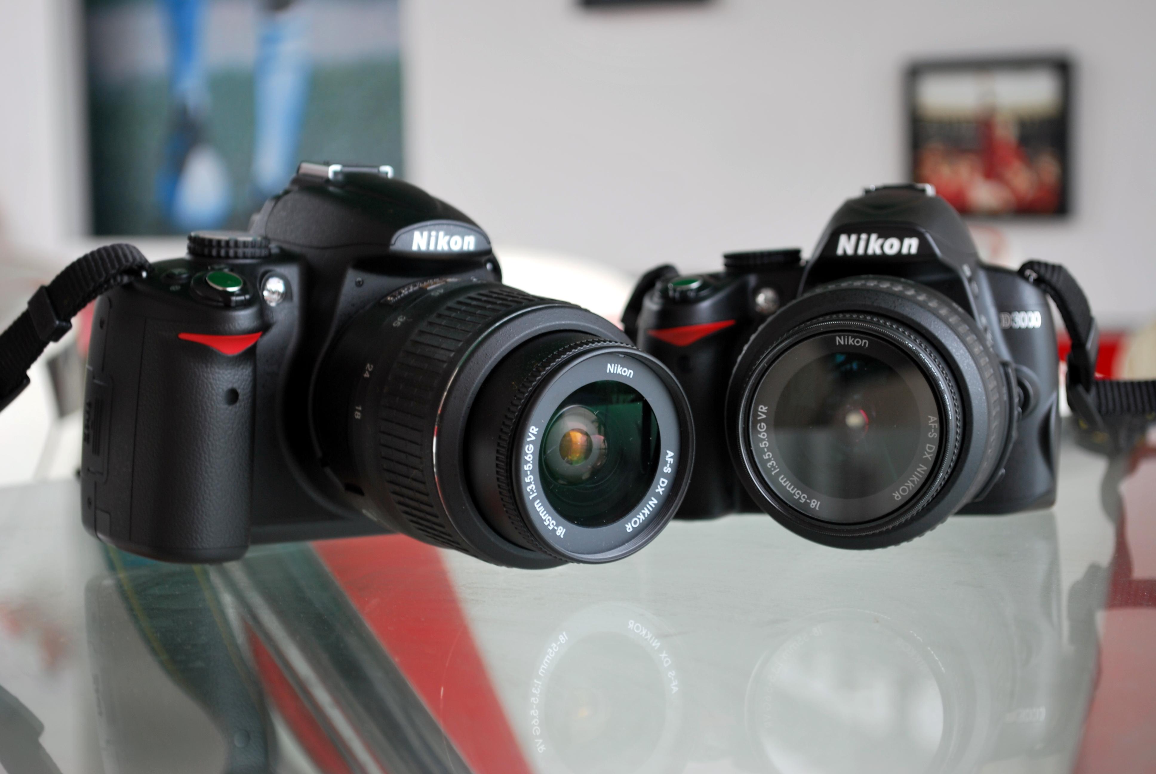 Nikon d5000 скачать прошивку