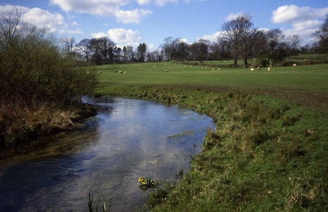 River Eye South of Lower Slaughter - geograph.org.uk - 453757