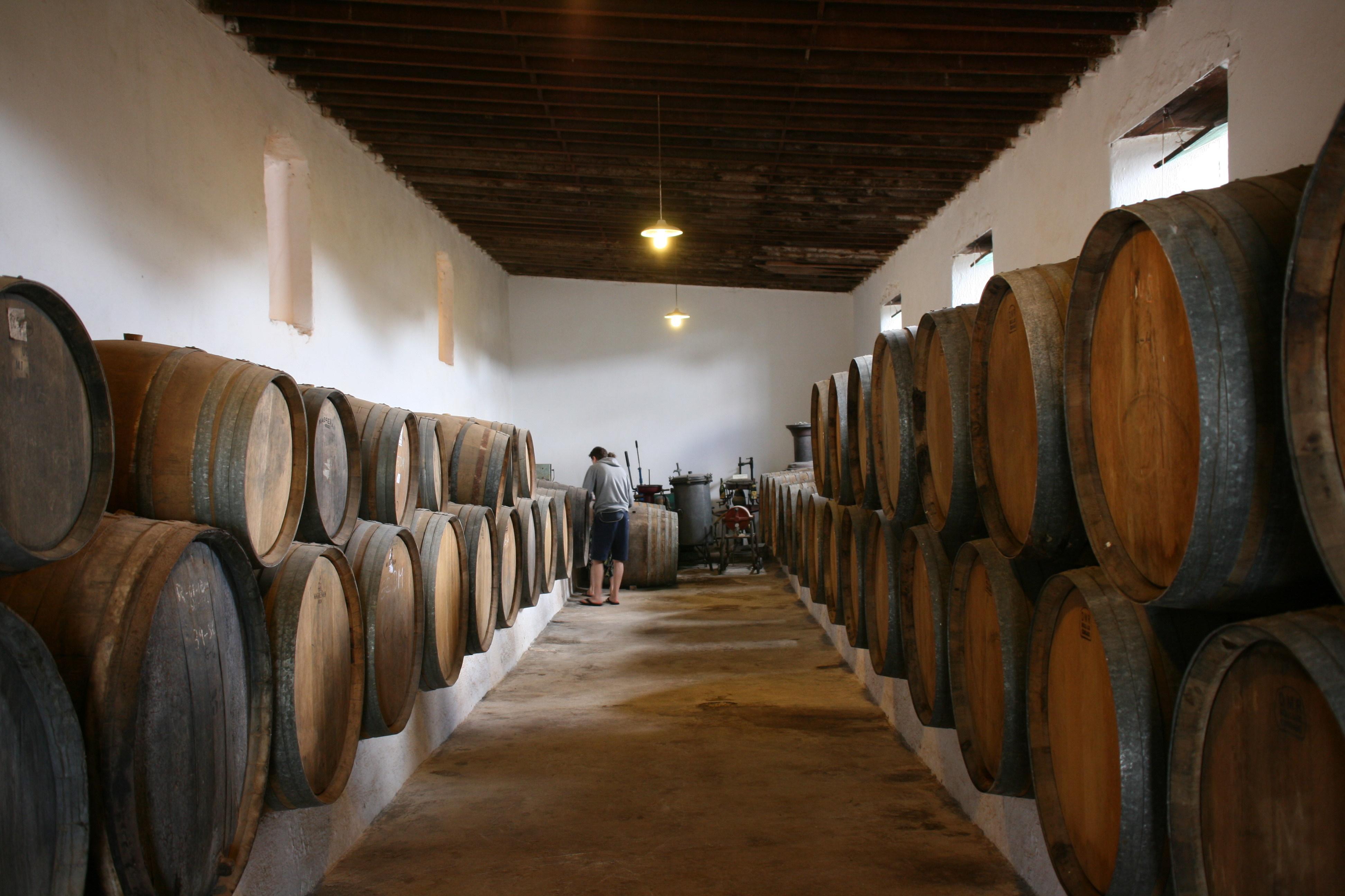Museo Del Vino.File San Bartolome Lz30 El Grifo Museo Del Vino 08 Ies Jpg
