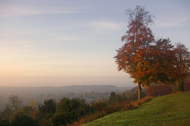 Sunrise at Reigate Hill - geograph.org.uk - 603818