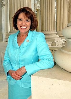 Susan Davis (politician)
