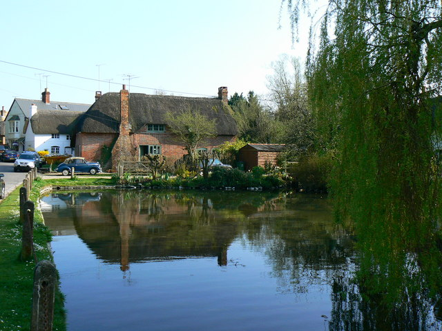 The village pond, Wilton - geograph.org.uk - 402673