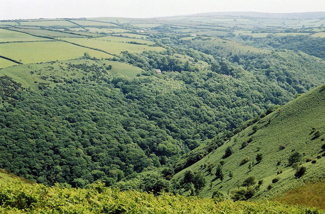 Trentishoe, looking south over the Heddon Valley - geograph.org.uk - 49265
