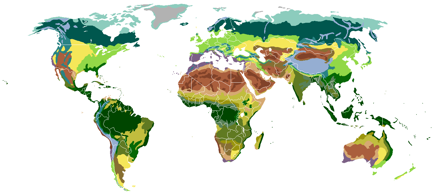 Terrestrial biomes classified by vegetation         Ice desert      Tundra      Taiga      Temperate broadleaf      Temperate steppe      Subtropical rainforest       Mediterranean      Monsoon forest      Desert      Xeric shrubland      Dry steppe      Semidesert       Grass savanna      Tree savanna      Subtropical dry forest      Tropical rainforest      Alpine tundra      Montane forests