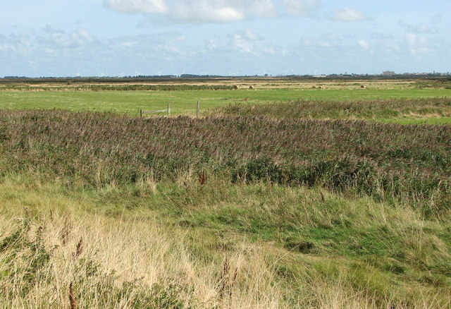 View across Burgh Castle Marshes - geograph.org.uk - 1484278
