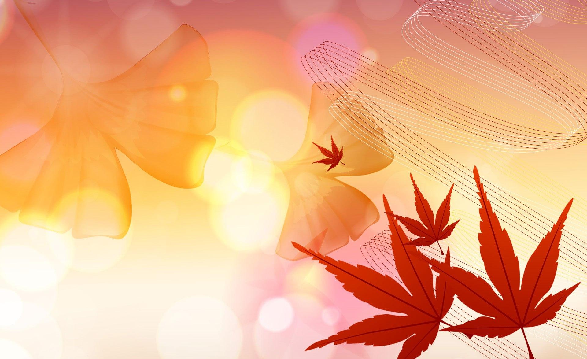 File:Autumn Colors.jpg - Wikimedia Commons
