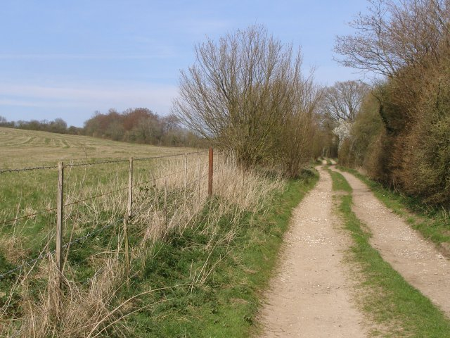 File:By-way east of Stephen's Castle Down - geograph.org.uk - 391444.jpg