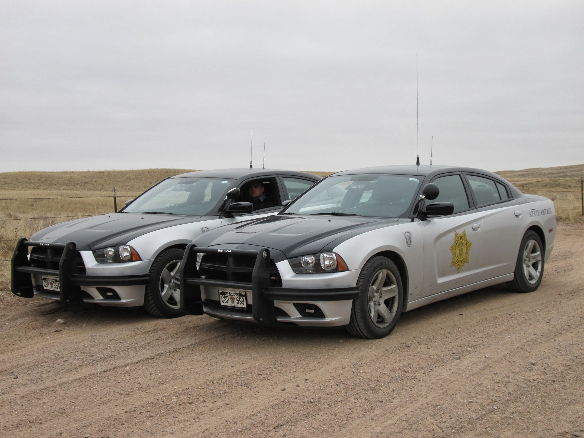 What Are The Most Used Models For Police Cars In Your