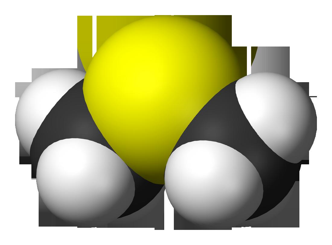 What Is Ppm >> Dimethylsulfide - Wikipedia