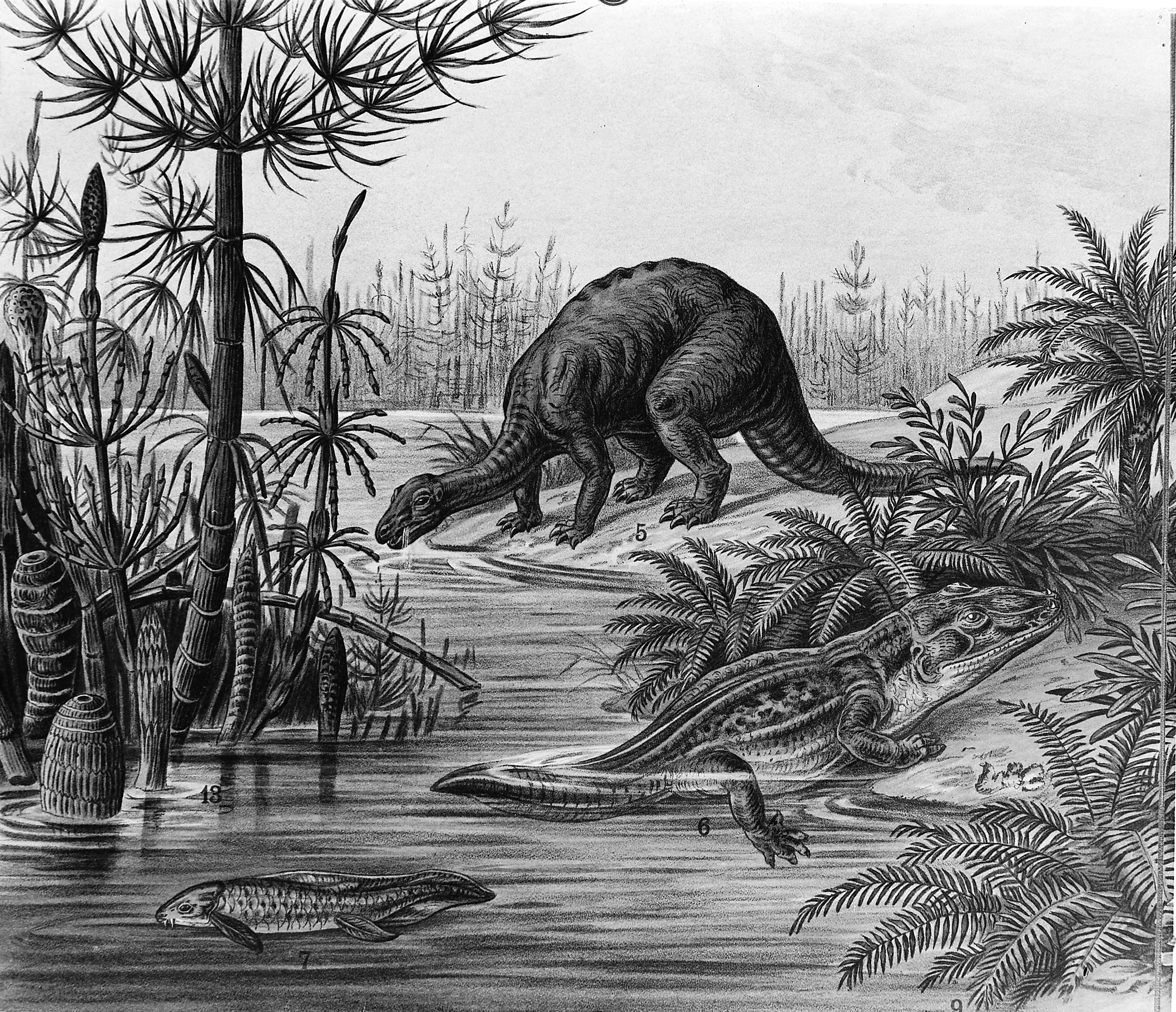 the triassic jurassic How can the answer be improved.