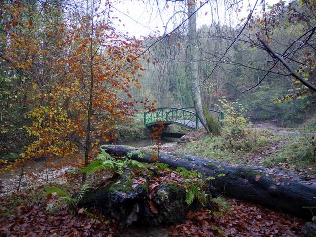 File Garden Of Eden Bridge Castle Eden Dene Geograph