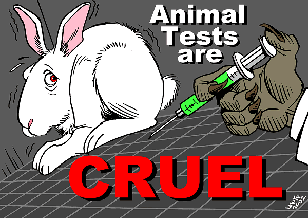 Image result for stop animal testing