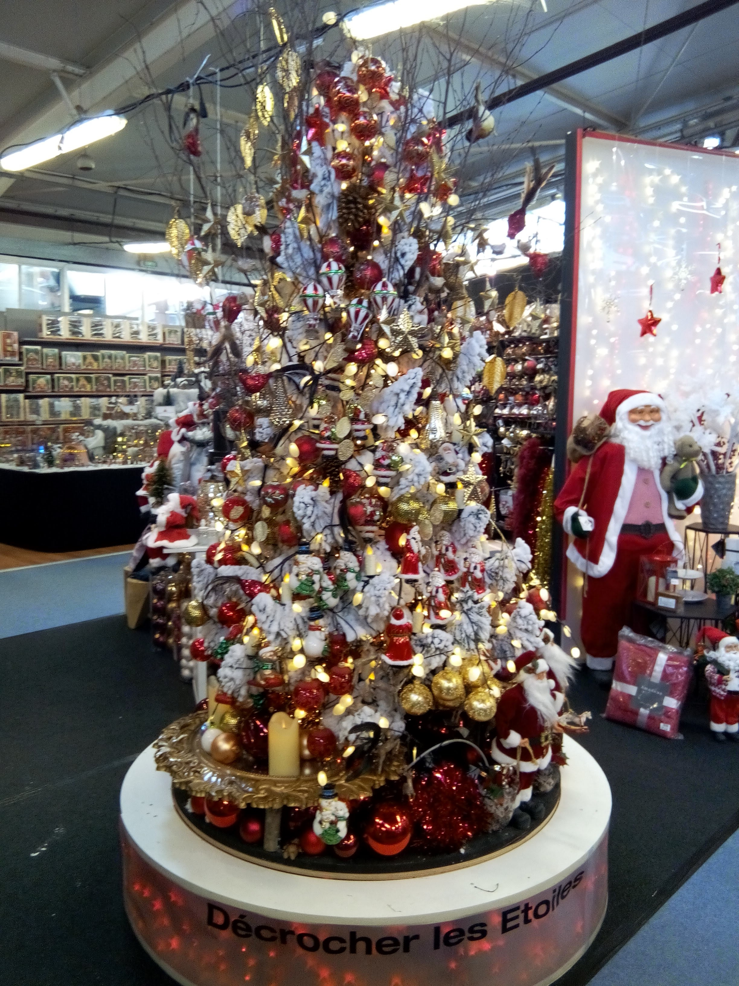 file le sapin de noel 2015 au magasin truffaut a rennes panoramio 1 jpg wikimedia commons. Black Bedroom Furniture Sets. Home Design Ideas