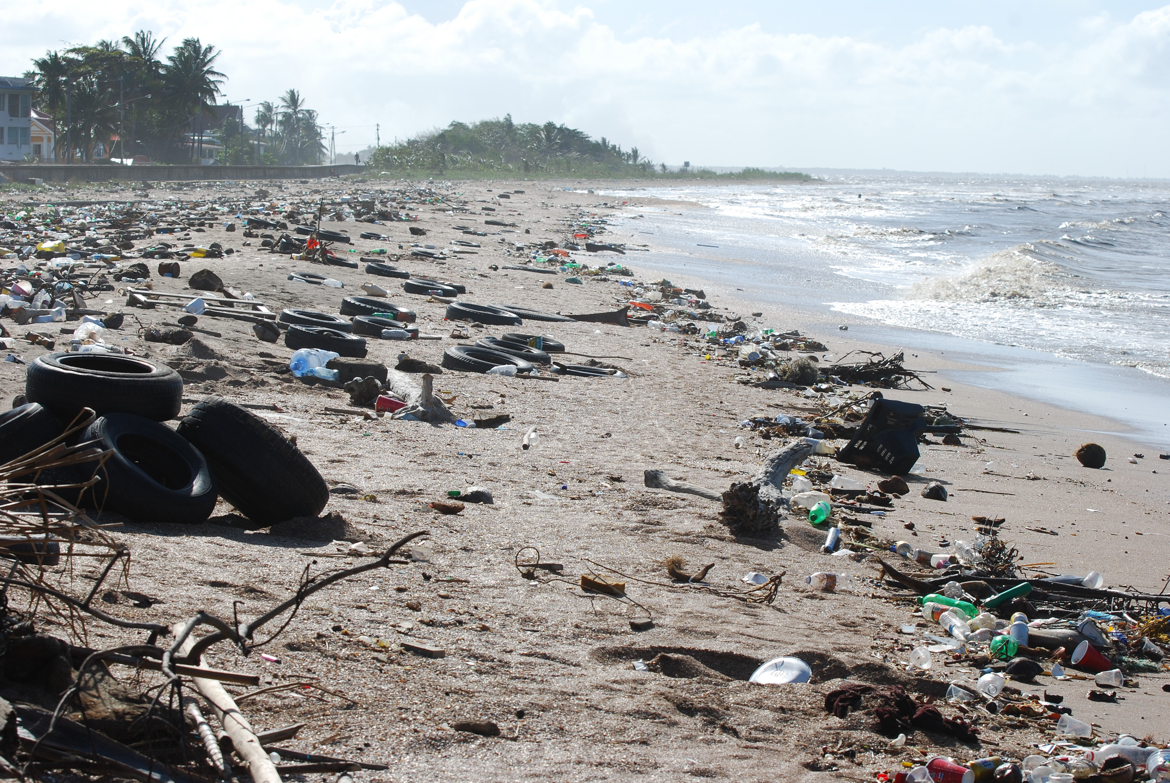 pollution  wikipedia the litter problem on the coast of guyana