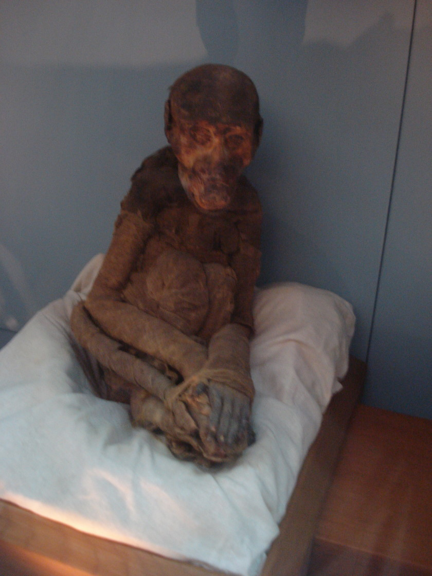 https://upload.wikimedia.org/wikipedia/commons/7/7c/Monkey_mummy.jpg