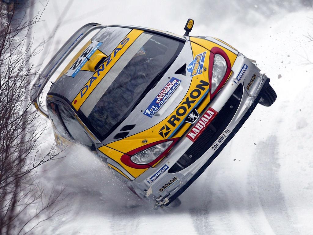 Peugeot_206_WRC.jpg