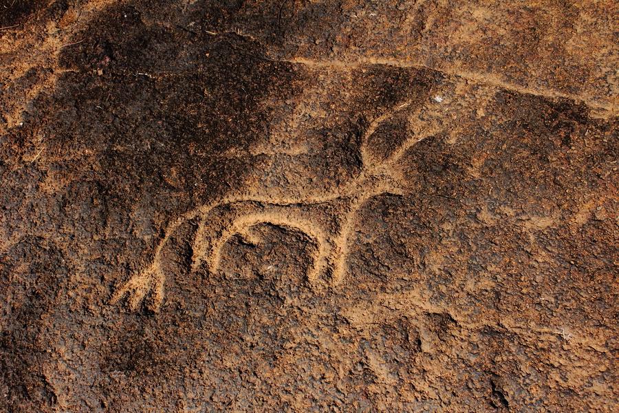 File rock carving at pansaimal sanguem in south goa g