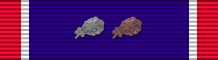 US DSC 7x ribbon.png