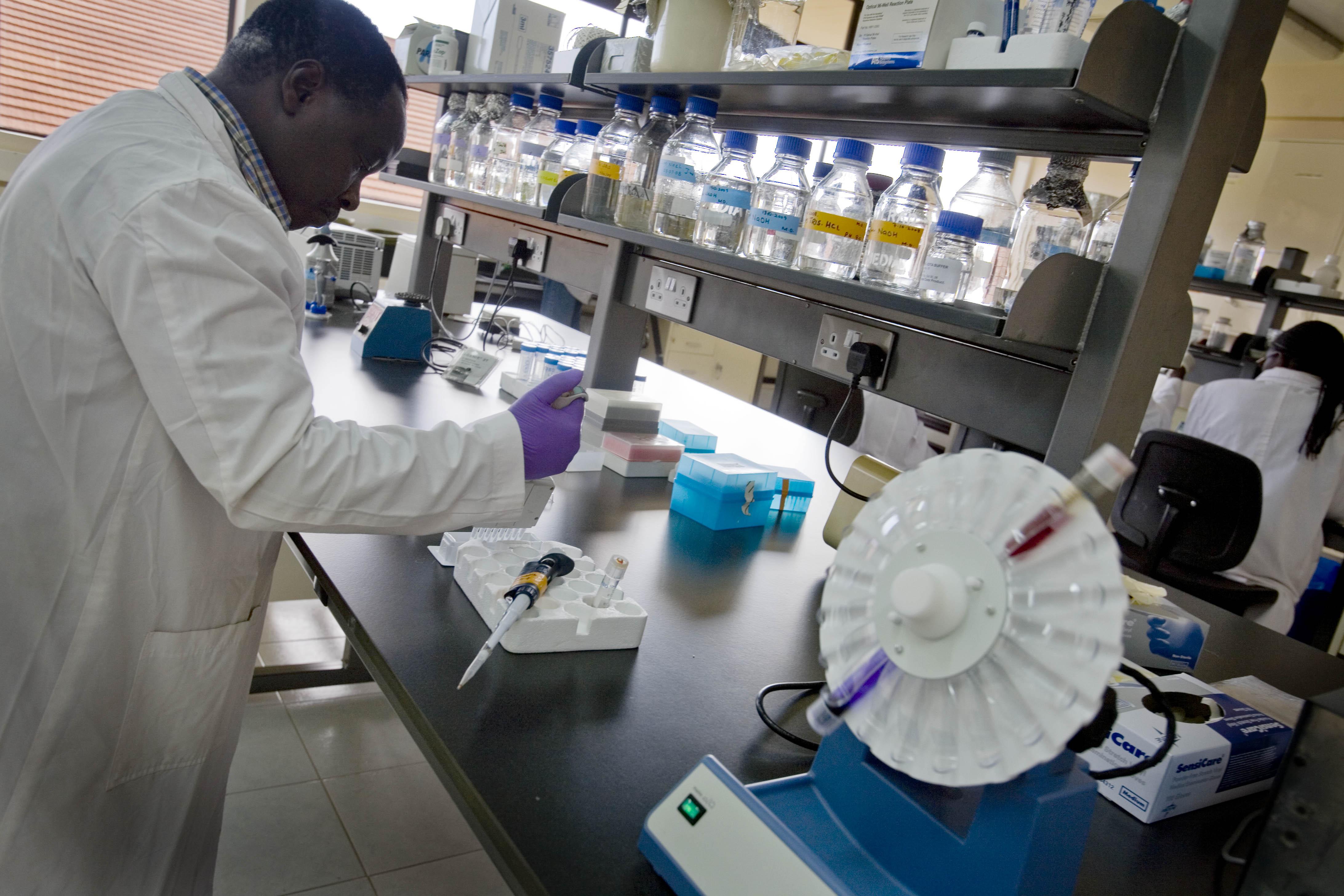 Scientist in livestock lab
