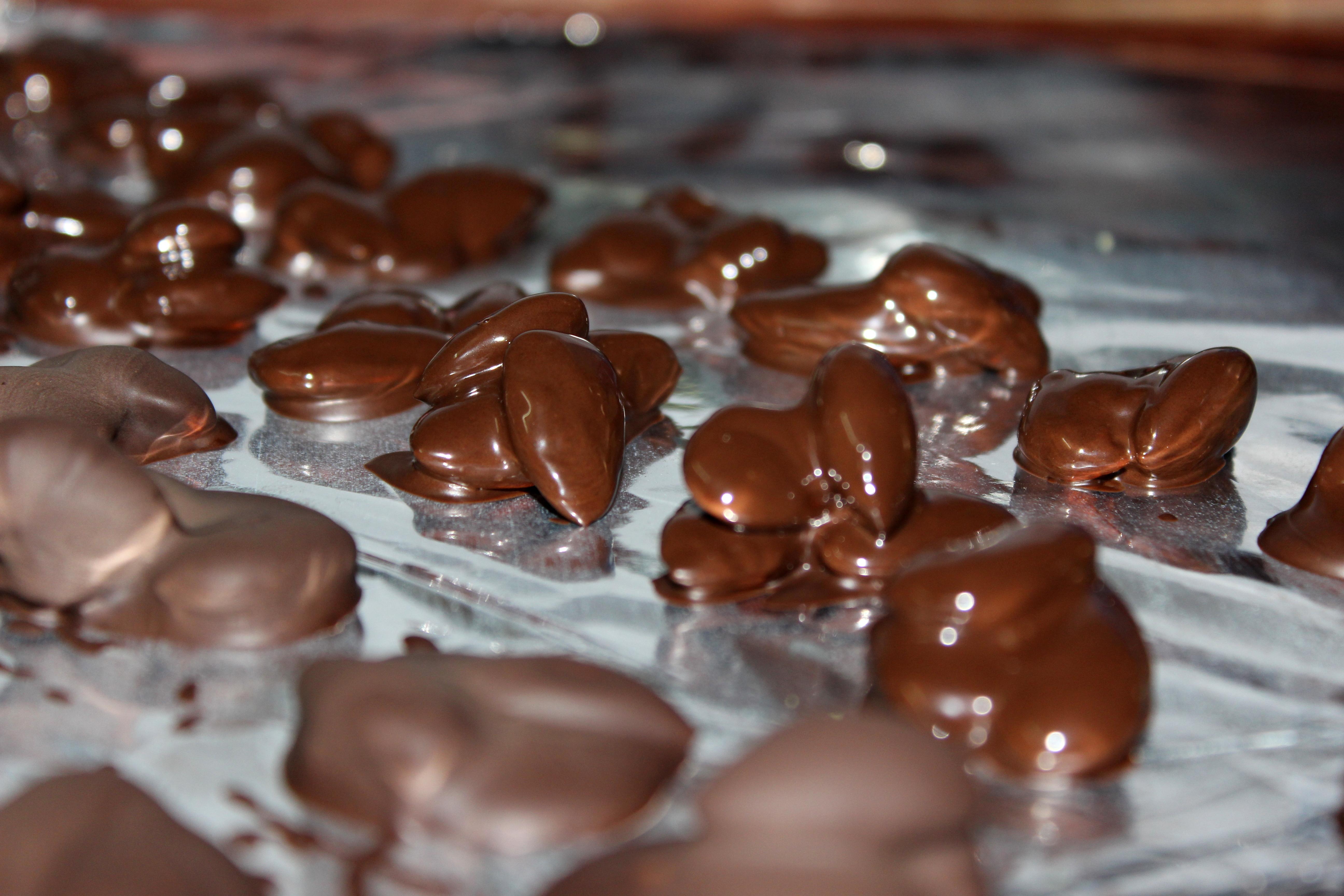 File almond chocolates g wikimedia commons