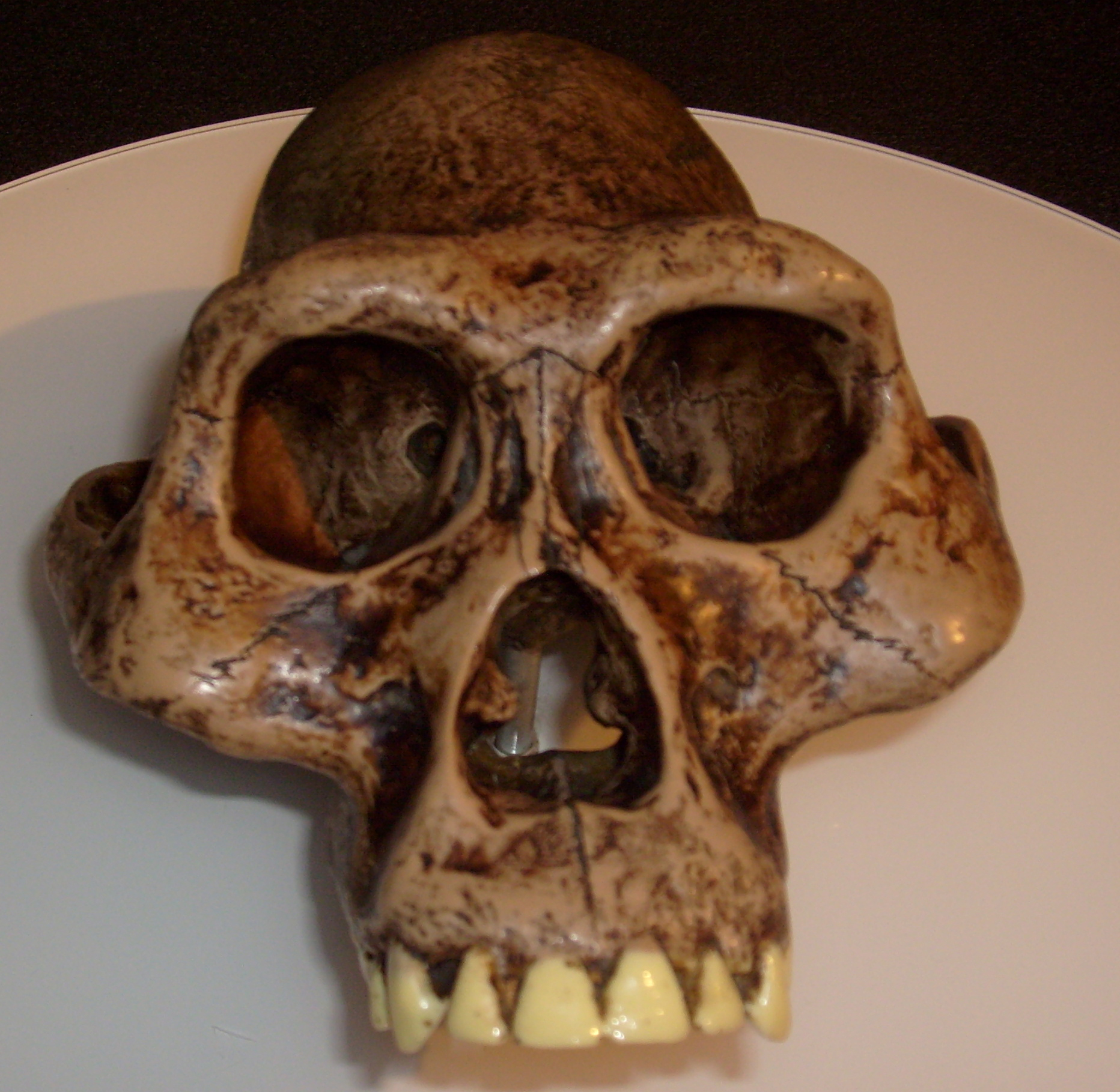 kakav je način datiranja fosila upoznavanje ili spajanje