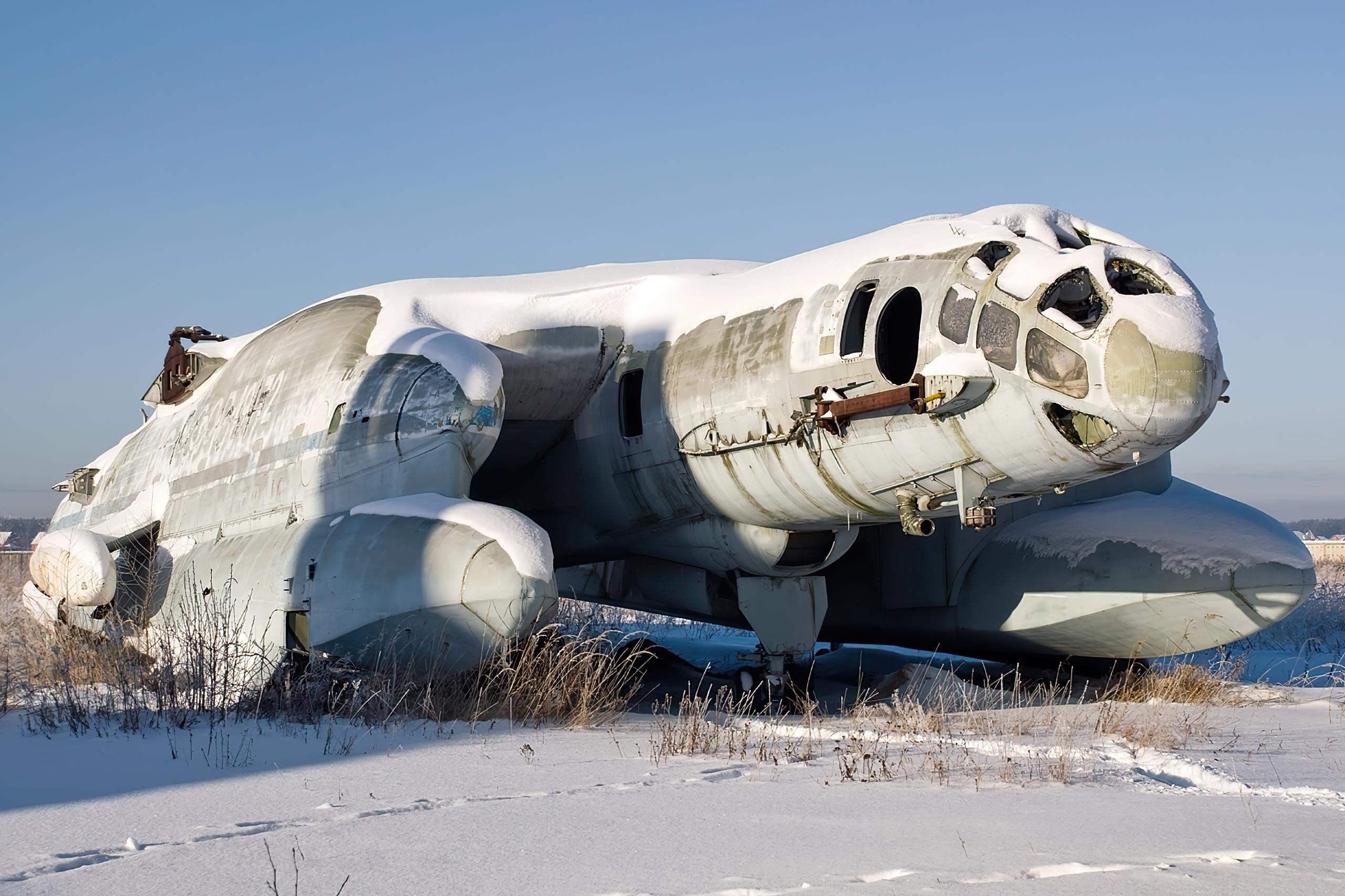 Beriev VVA-14 in 2010.jpg