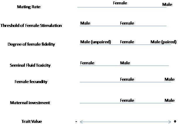 Various factors that affect sexual conflict between a male and female. Only the relative positions of the optimal trait values are important as the comparative positions of the male and female provide information regarding their sexual conflict. The trait value bar at the bottom of this figure indicates the relative intensity of each trait. Bio 166 revised wiki sexual conflic diagram.jpg
