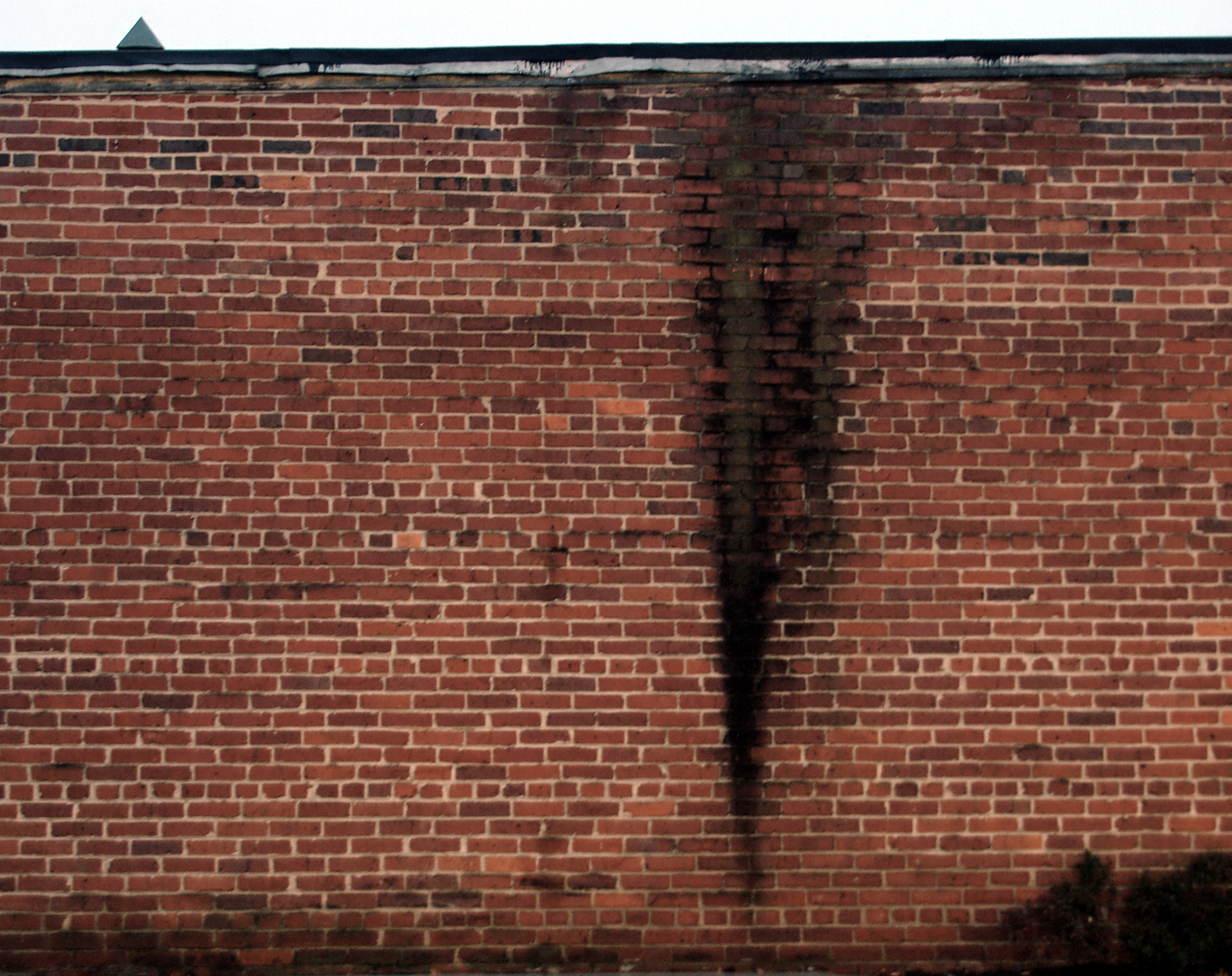 File:Brick Wall, Stain (Silver Spring, MD) (5264805329 ...