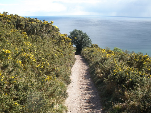 File:Cliff-top path, leading to West Down Beacon - geograph.org.uk - 1225602.jpg