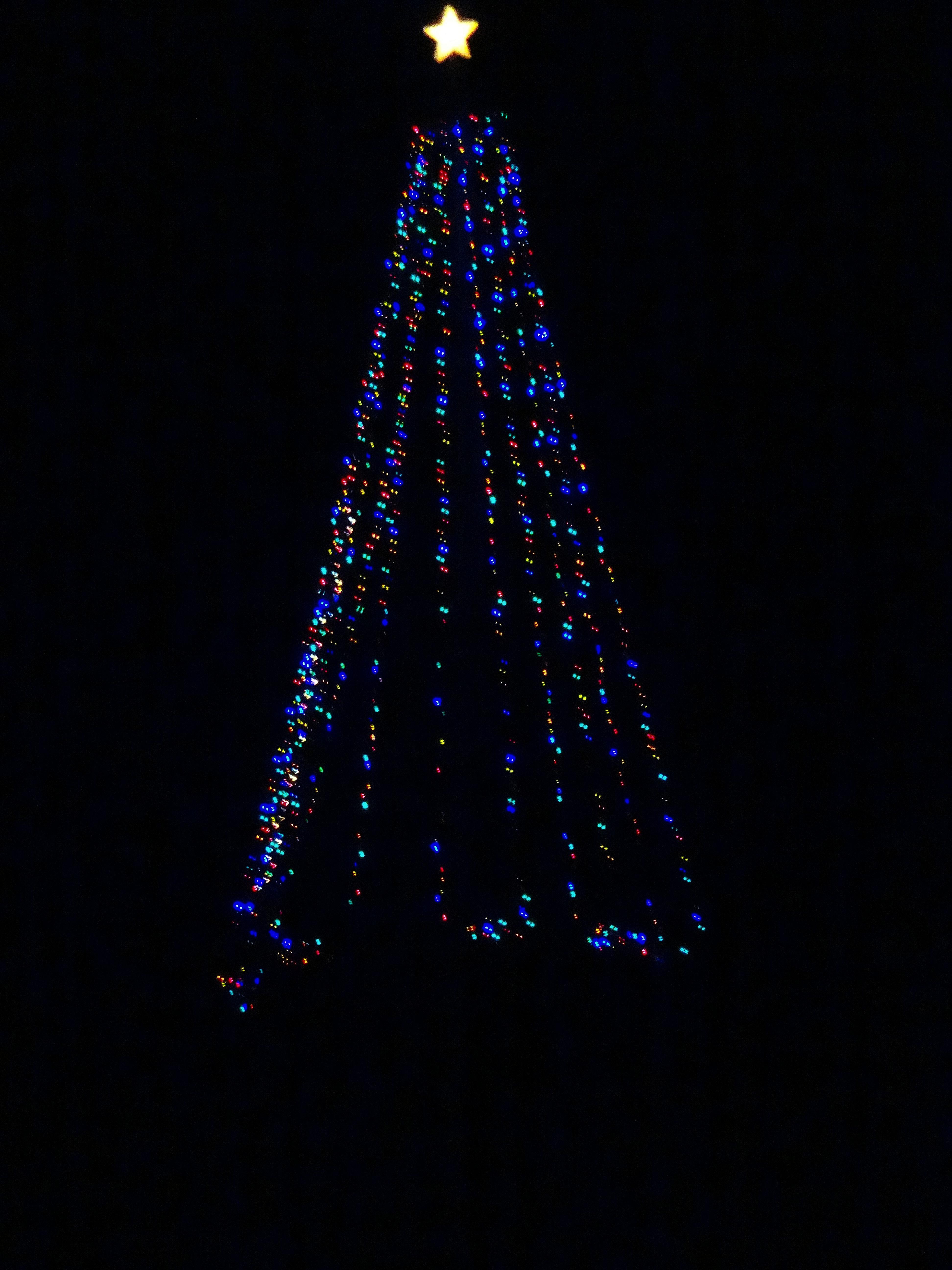 filecross plains hilltop christmas tree panoramio 3jpg - Hilltop Christmas
